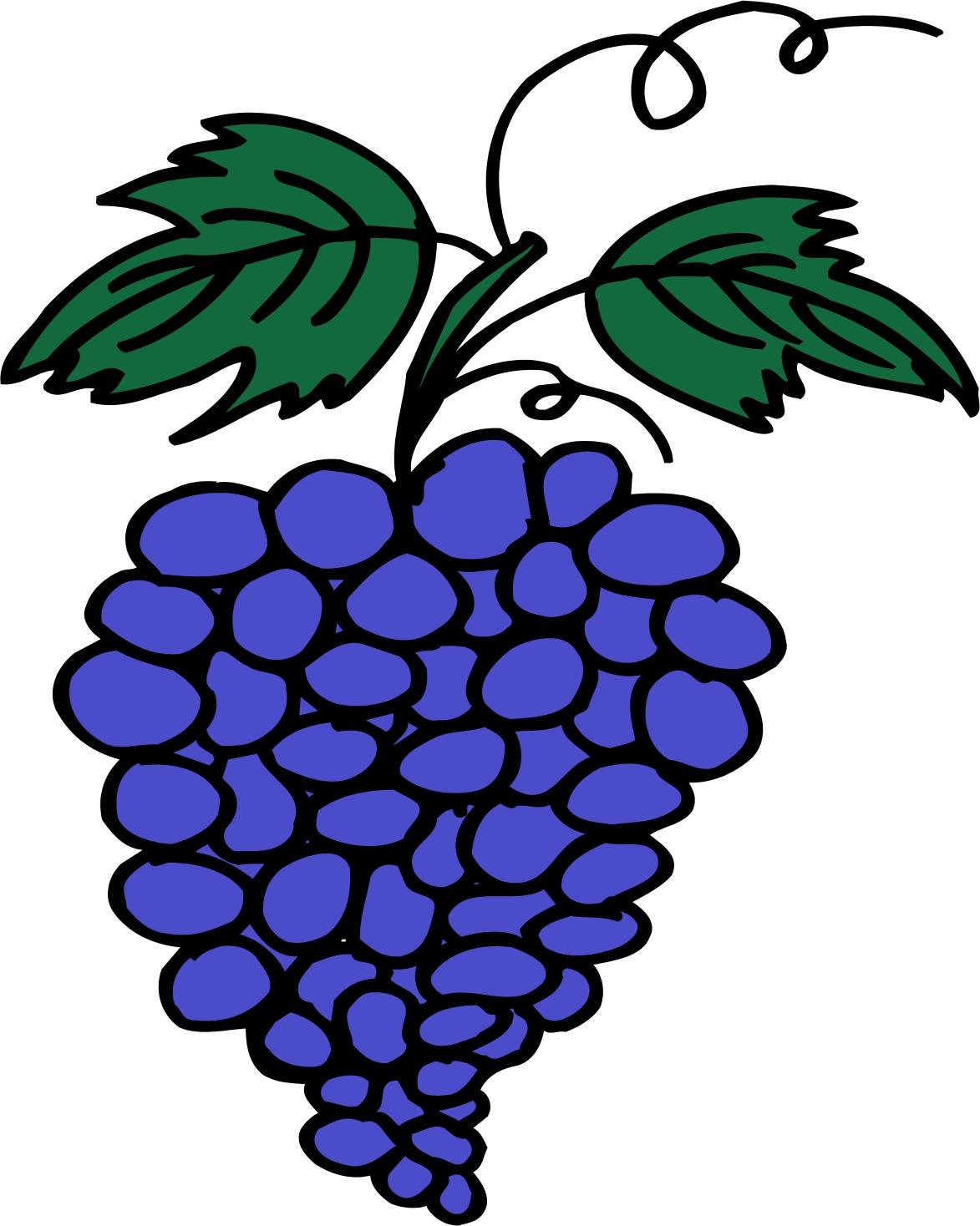 Cartoon Grapes.