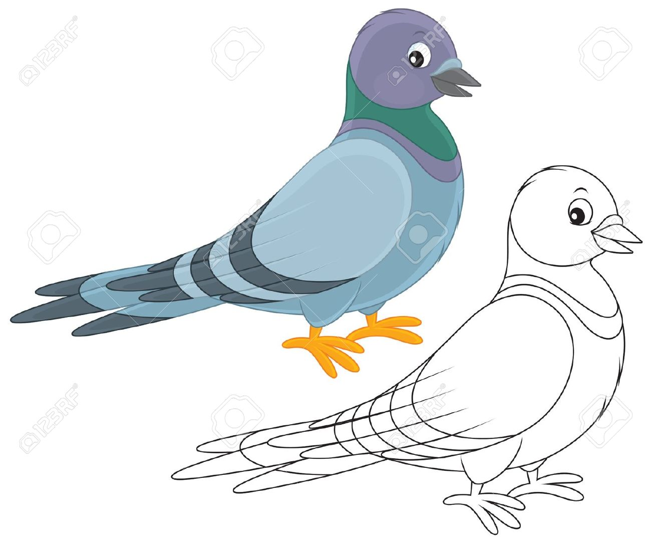 Gray Pigeon Royalty Free Cliparts, Vectors, And Stock Illustration.