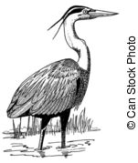 Heron Illustrations and Clip Art. 1,248 Heron royalty free.