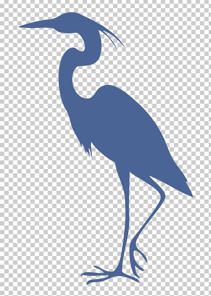 Great Blue Heron Grey Heron Bird Cleaning PNG, Clipart.
