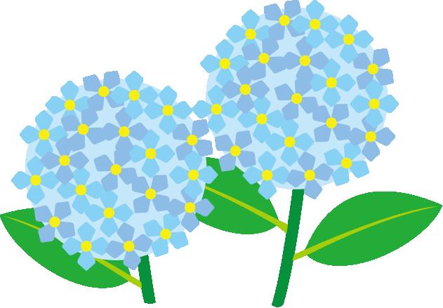 Hydrangea Clipart.