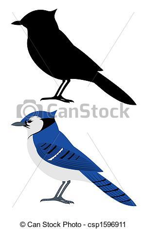 Blue jay Illustrations and Stock Art. 124 Blue jay illustration.