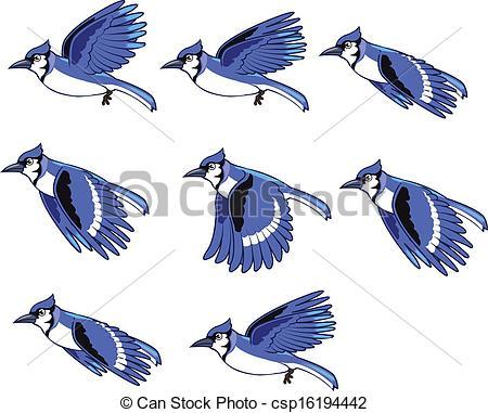 Blue jay Clip Art Vector Graphics. 74 Blue jay EPS clipart vector.