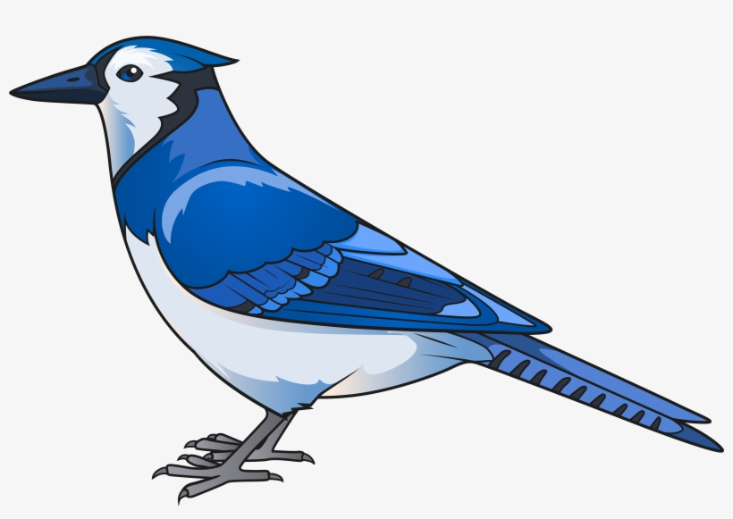 Bird Transparent Clip Art.