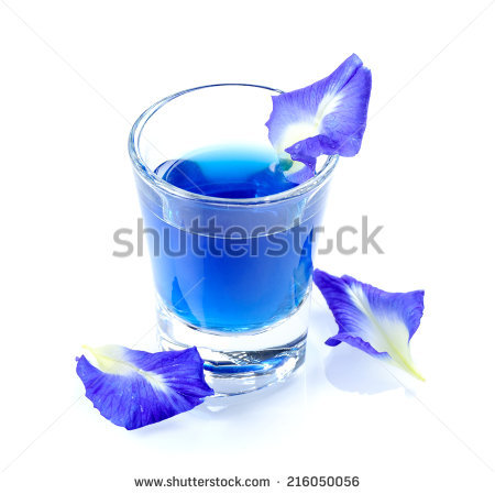 Clitoria free stock photos download (1 Free stock photos) for.