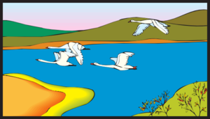 Geese Flying Over A Lake Clip Art at Clker.com.