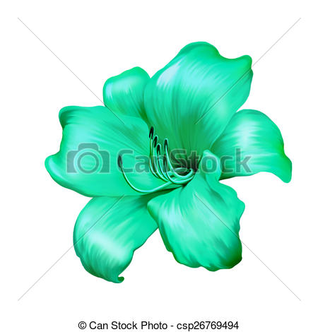 Stock Illustration of illustration of green blue lily flower.