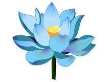 Vector Blue Lotus Stock Illustration.