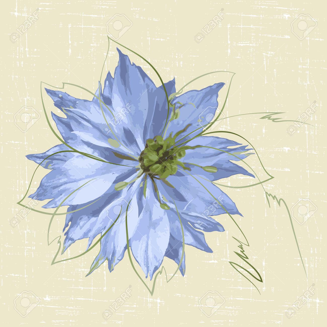 Decorative Background With Blue Flower Nigella. Vector.