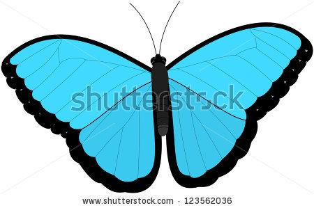 Blue Morpho Butterfly Stock Vector 123562036.