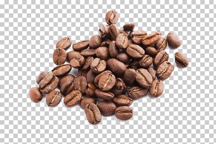 Jamaican Blue Mountain Coffee Espresso Seed Drink, coffee.