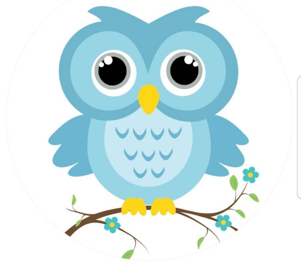 Blue owl cleaning services.