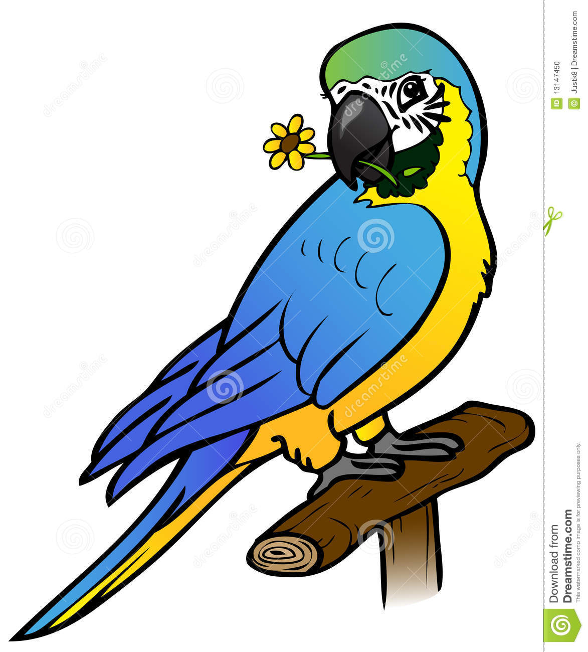 Cute Parrot With Flower Stock Photo.