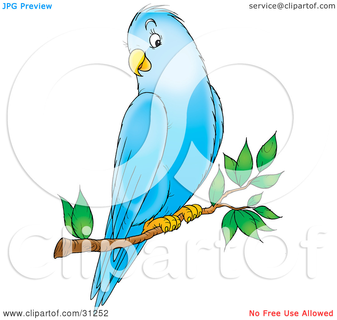 Clipart Illustration of a Friendly Blue Parakeet Perched On A Tree.