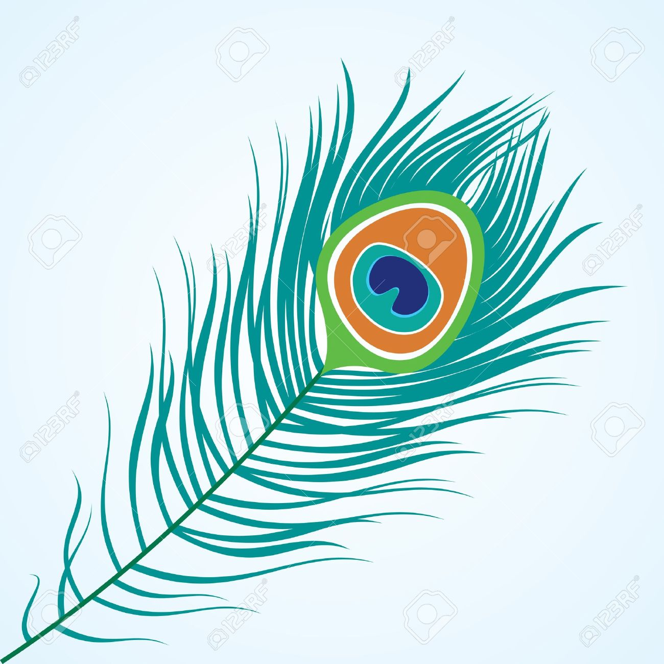 Peacock feathers background drawing