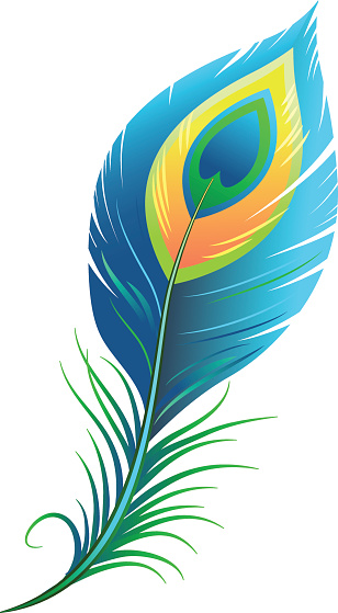 Peacock Blue Feather Clip Art.