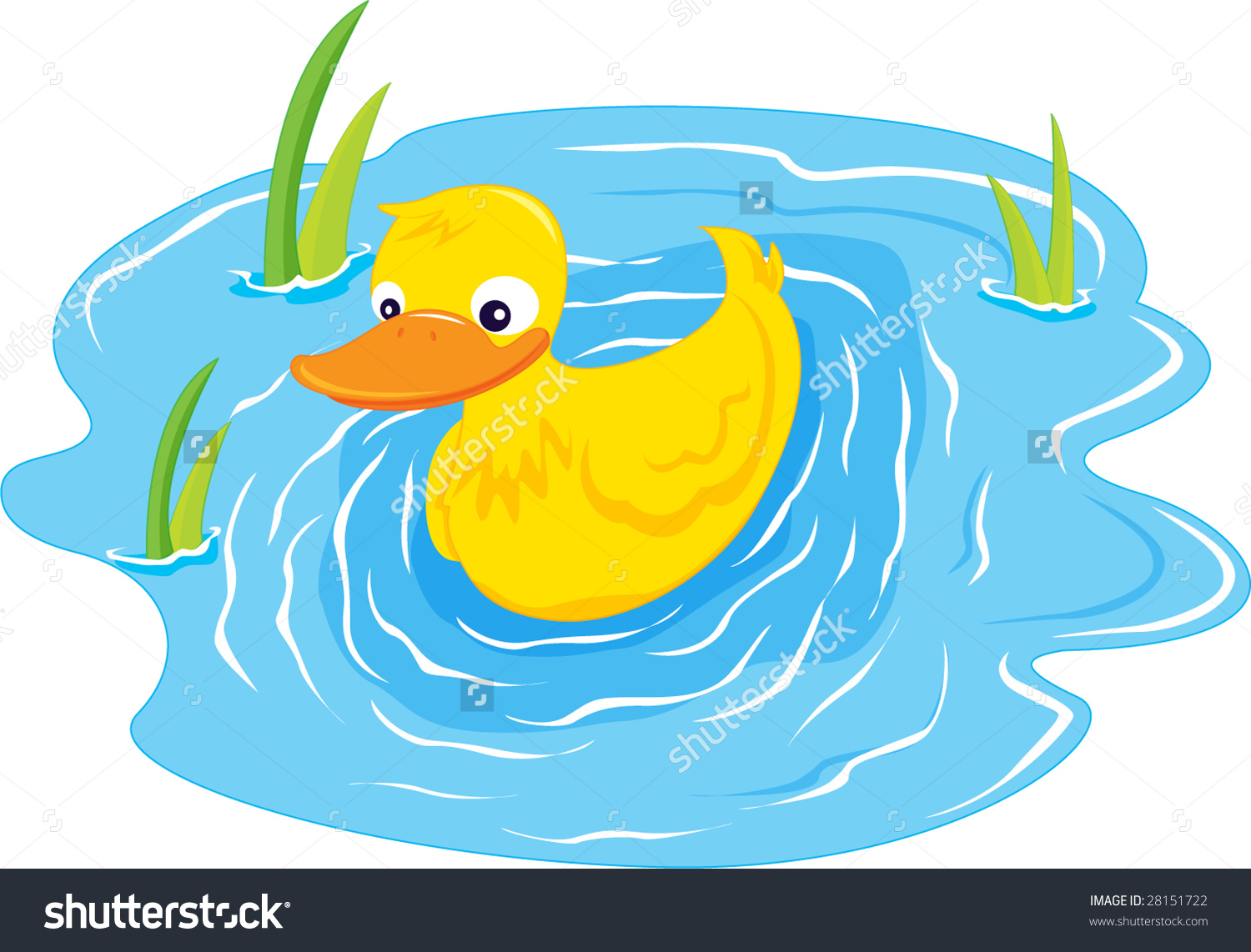 Illustration Duck Swiming Blue Pond Stock Illustration 28151722.