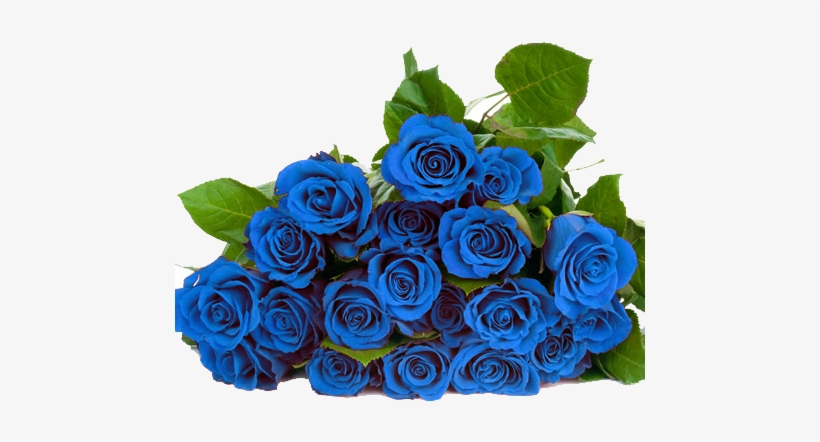 Blue Roses Png.