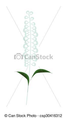 Vector Clip Art of Blue Sage Flowers or Salvia Officinalis Flower.