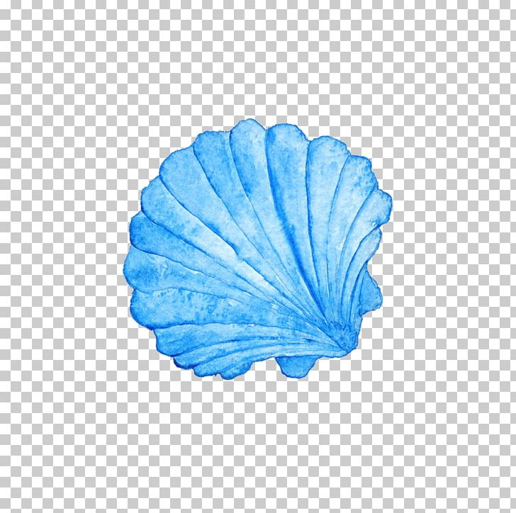 Seashell Watercolor Painting Photography PNG, Clipart, Animals.