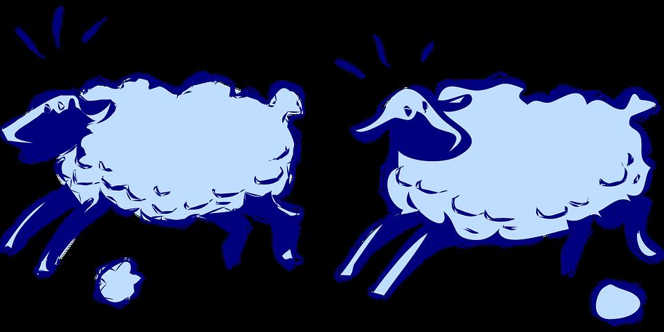 Free vector graphic: Sheep, Running, Lambs, Animal, Lamb.