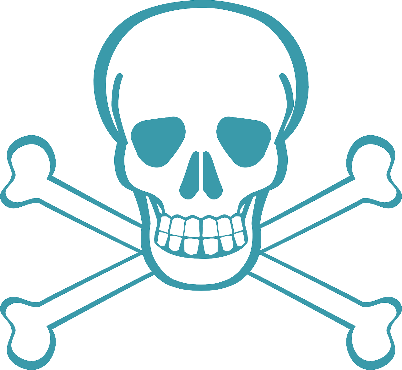 Death\'s Head Skull Skull And Crossbones Free Picture.