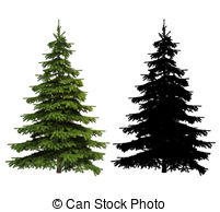 Spruce tree Stock Illustrations. 11,827 Spruce tree clip art.