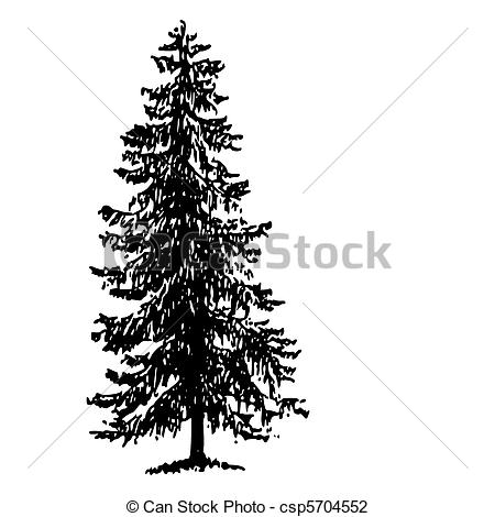 Spruce Stock Illustrations. 14,060 Spruce clip art images and.
