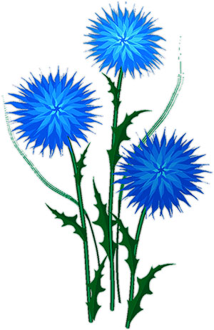 Tall flowers clipart.