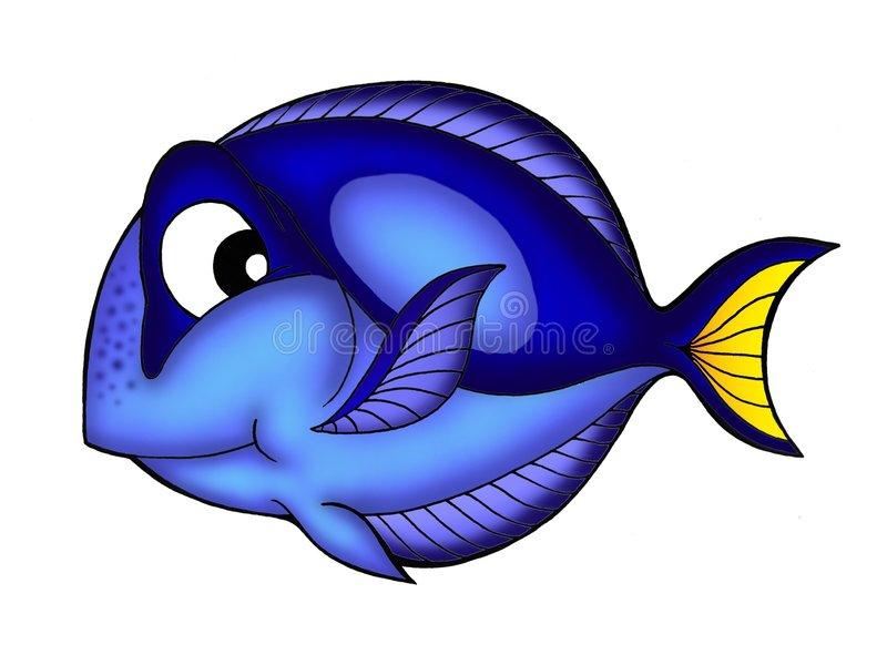 Blue Tang Fish Stock Illustrations.