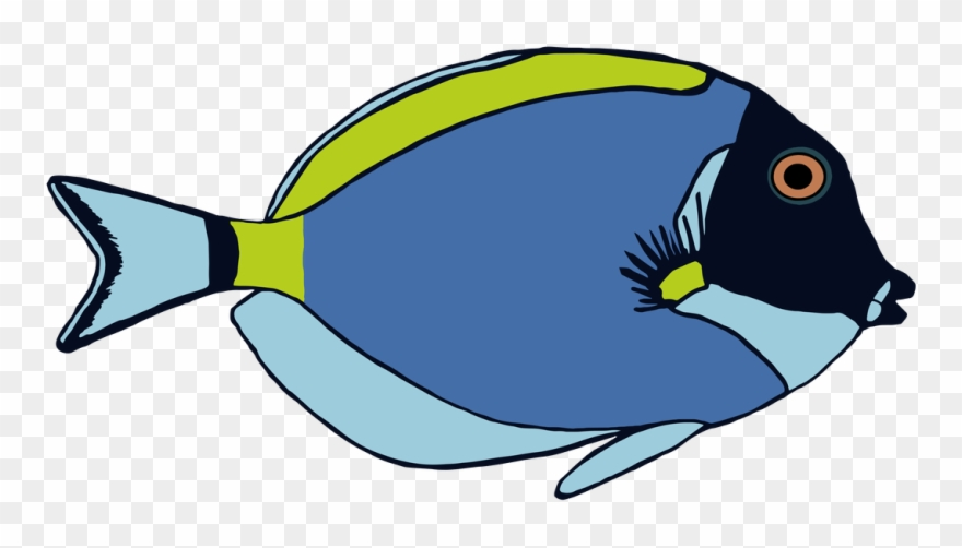 Clipart Fish Colorful.
