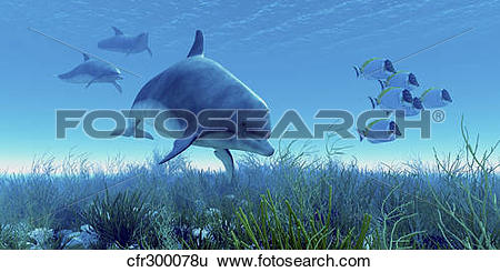 Stock Illustration of A school of blue tango fish swim away from a.