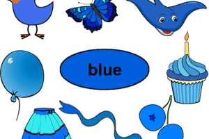 Things that are blue in color clipart » Clipart Portal.