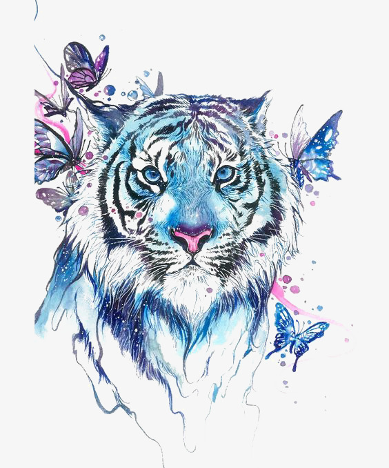 Drawing Tiger, Tiger Clipart, Tiger, Blue PNG Transparent Image and.
