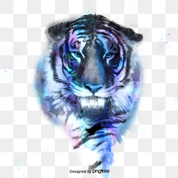 Tiger PNG Images, Download 1,890 PNG Resources with Transparent.