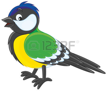 340 Blue Tit Stock Vector Illustration And Royalty Free Blue Tit.