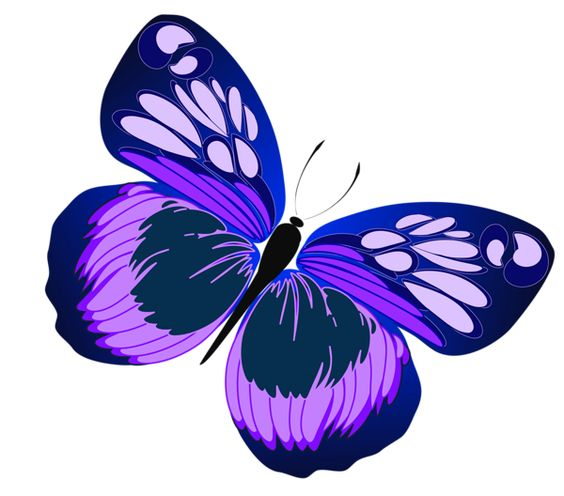 Blue and Purple Butterfly PNG Clipart.