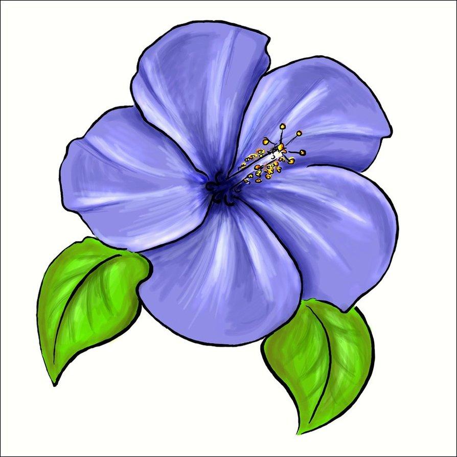 Viola Flower Clipart.