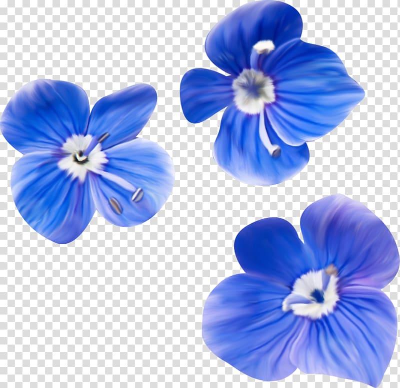 Blue , flores azuis transparent background PNG clipart.