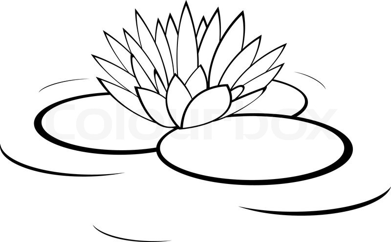 Lily Ponds Clipart.