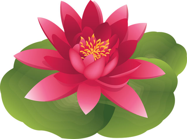 Water lily graphics.