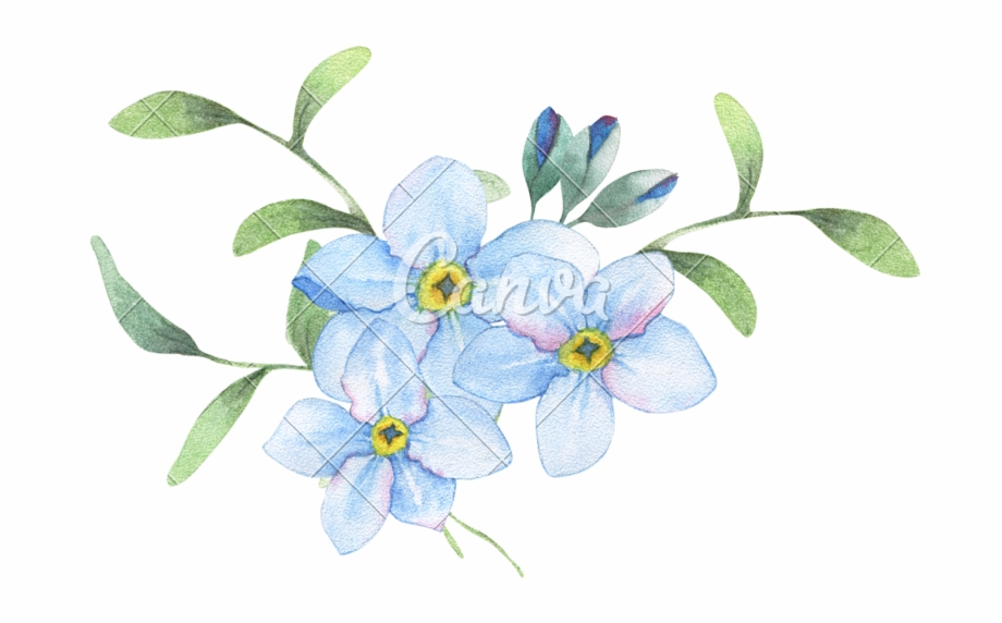 Flower Painting Stock Photography.
