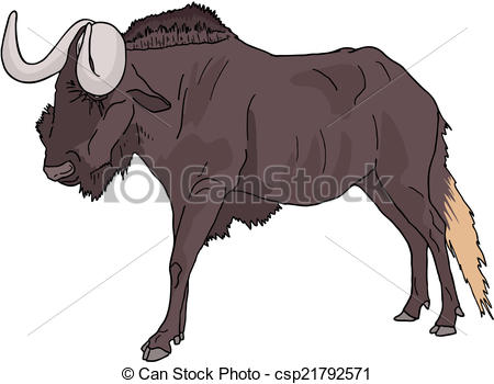Wildebeest Clipart Vector Graphics. 165 Wildebeest EPS clip art.