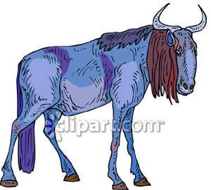 Blue wildebeest clipart #12