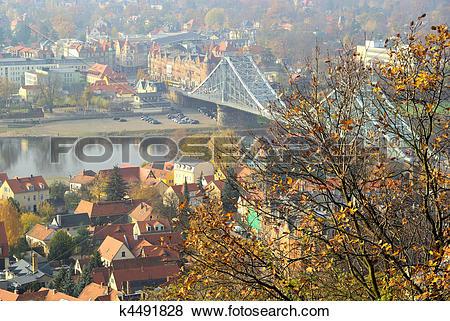 Pictures of Dresden Blue Wonder 08 k4491828.