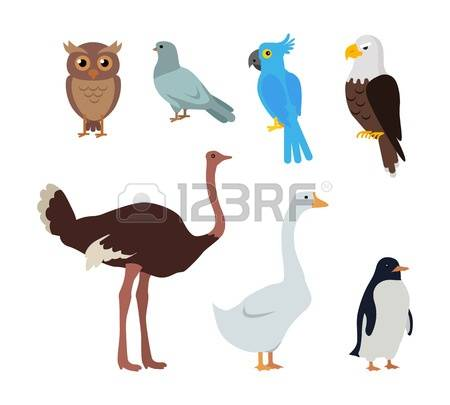 57 Beaked Stock Vector Illustration And Royalty Free Beaked Clipart.