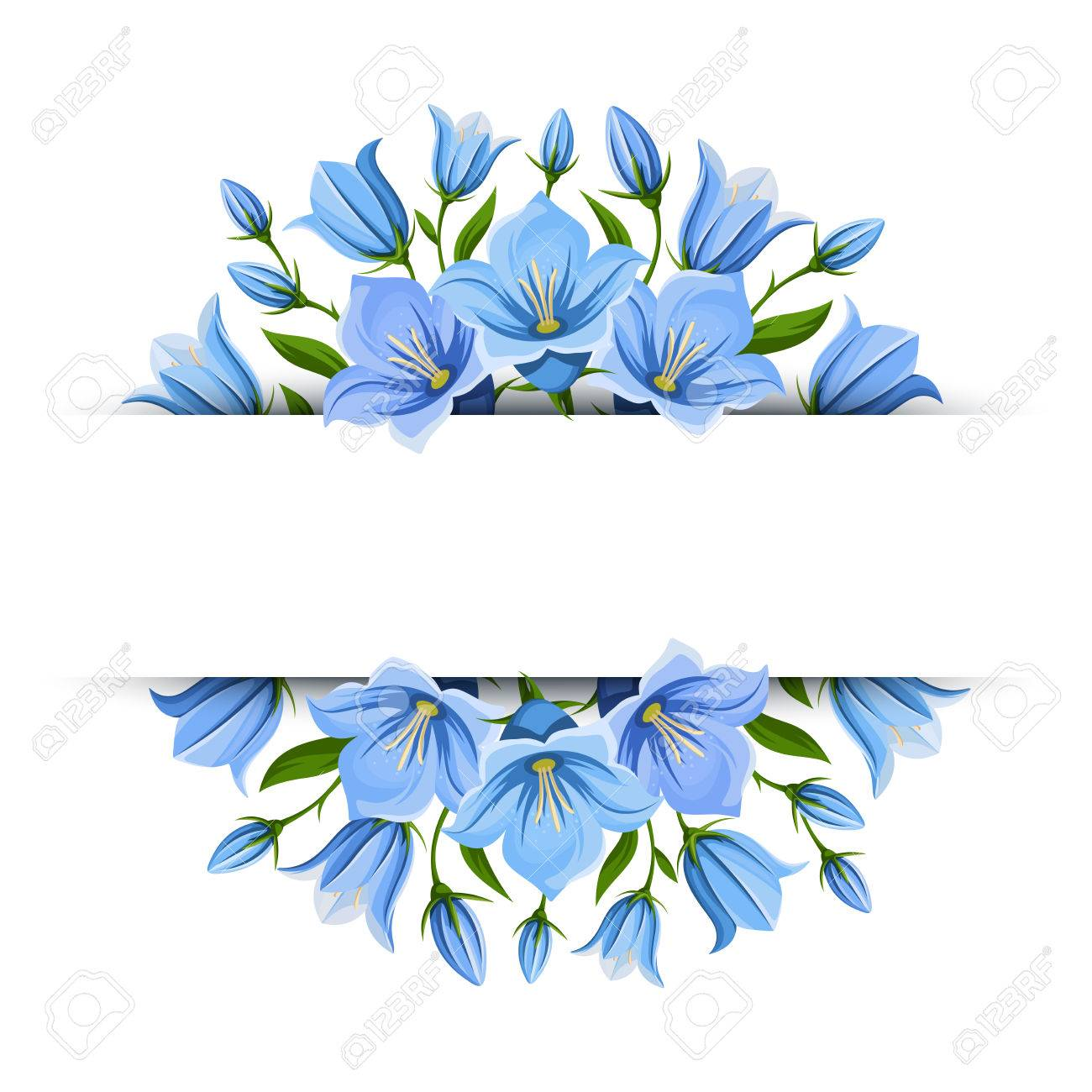 Vector background banner with blue bluebell flowers..