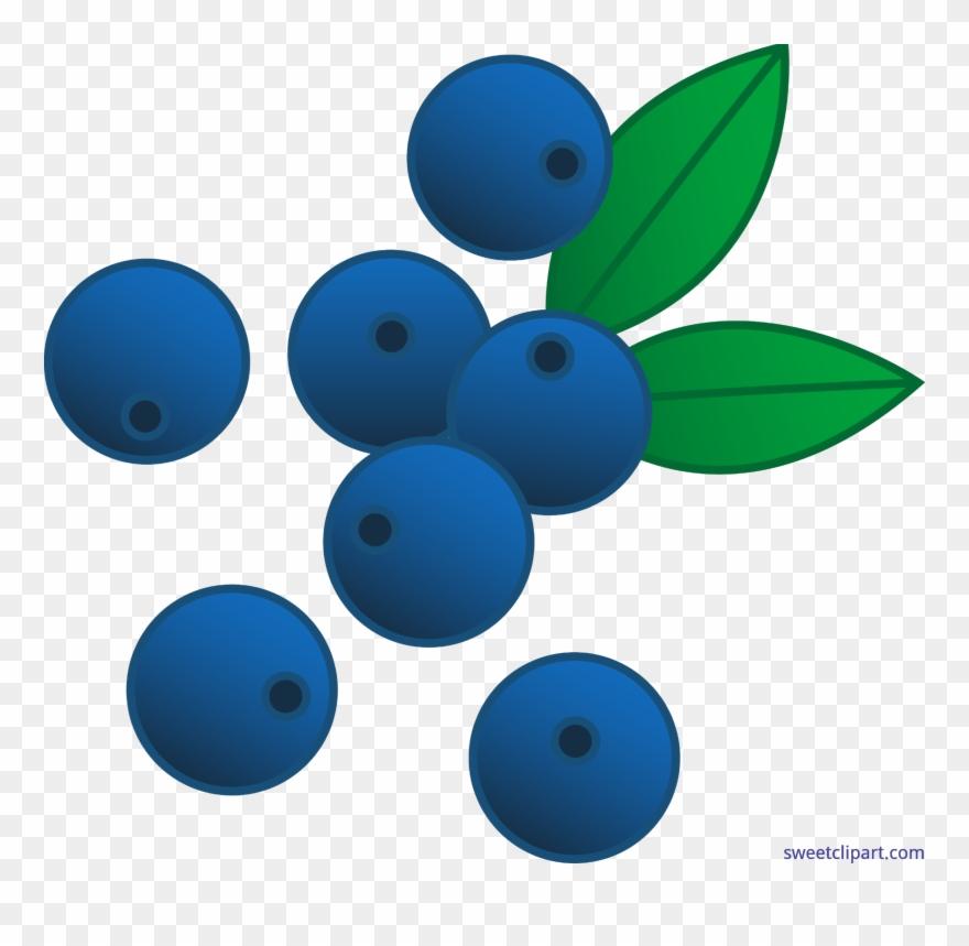 Berries Blueberries Clip Art.