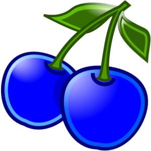 Blueberries clip art.