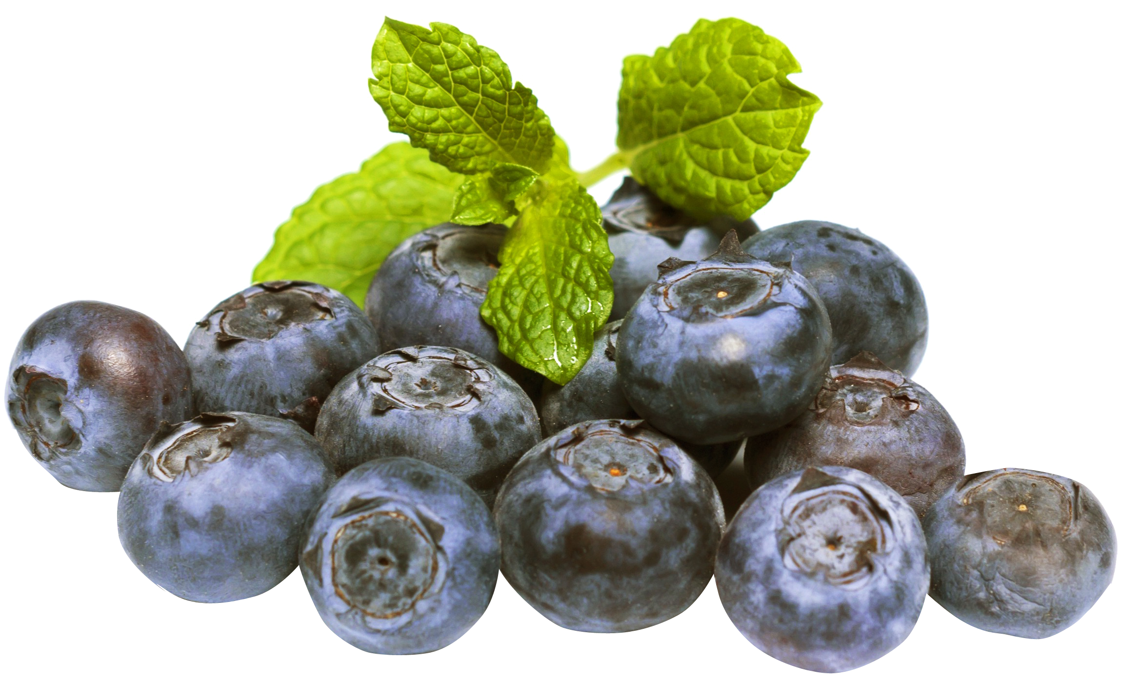 Blueberries PNG Image.